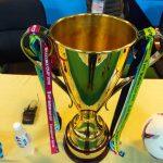 Cup vàng AFF làm bằng gì – Danh sách các nhà vô địch AFF Cup